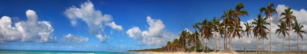 ハワイ旅行中の人工透析(Dialysis)ヘッダー画像